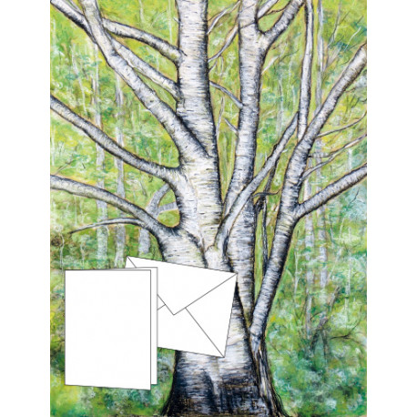6 cartes «fusain» de l'artiste Joëlle Sportès
